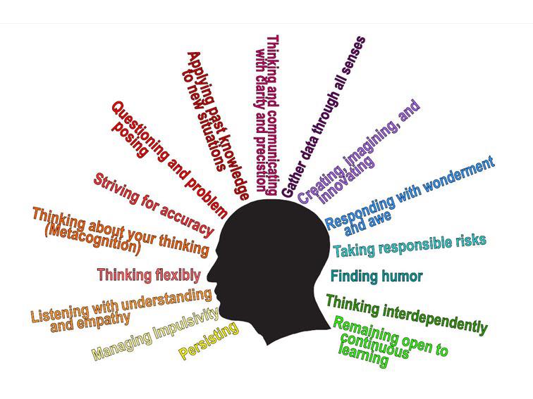 habits-of-mind-head