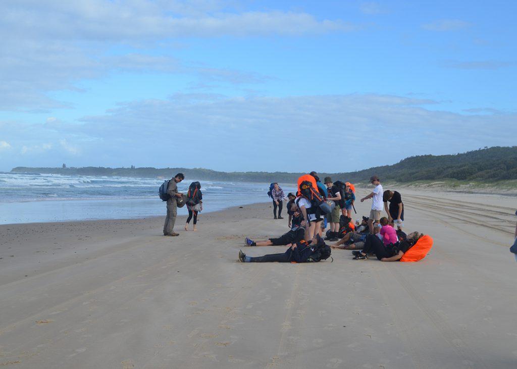Bronze Beach Walkers