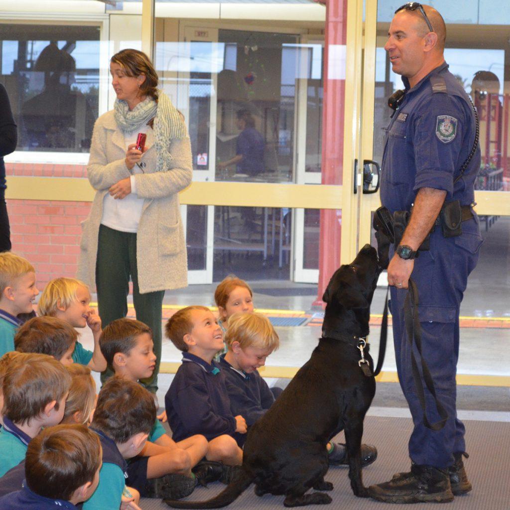 Police Dog Rufus